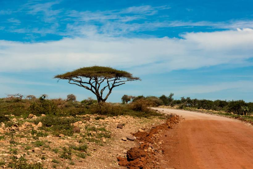 serengeti-tansania